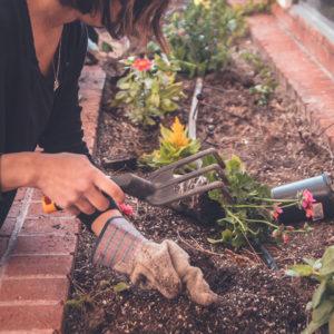 trädgårdsservice för privatpersoner